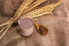 Glass of chocolate malt milk. On sackcloth Royalty Free Stock Photography