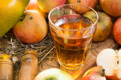 Glass of cider with apples Royalty Free Stock Photo