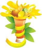 A glass of citrus fruit and a centimeter royalty free illustration