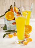Glass of Citrus juice and fresh oranges and mandarines Stock Photography