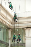 Glass cleaner abseiling from a tall building. Royalty Free Stock Photos