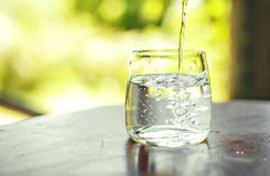Glass of clear water on the table. On nature background. Healthy and diet concept. Detox. Copy space royalty free stock images