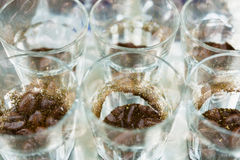 Glass of coffee for taster to smell and taste aromatic and flavo. R wheel. art of aroma perception in brewed coffee double exposure with roasted bean. cupping Stock Image