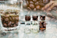 Glass of coffee for taster to smell and taste aromatic and flavo. R wheel. art of aroma perception in brewed coffee double exposure with roasted bean. cupping Royalty Free Stock Photography