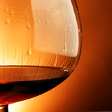 Glass of cognac close-up Stock Image