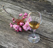 Glass of cognac and flowers. On a wooden ancient table Stock Images