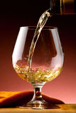 Glass of cognac Stock Photography