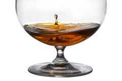 glass cognacdroppfalls Royaltyfri Bild