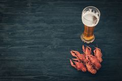 Glass of cold beer and boiled crawfish on a black wooden background. royalty free stock photo