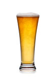 Glass of cold beer with foam  Stock Photo