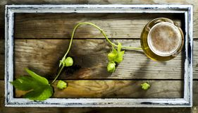 Glass of cold beer with hops in the old frame. Royalty Free Stock Images