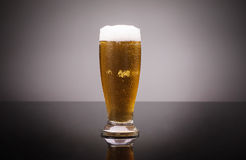 Glass of cold beer. Isolated Stock Photo