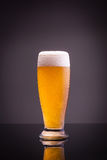 Glass of cold beer Stock Photos