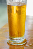 Glass of cold beer Stock Photo