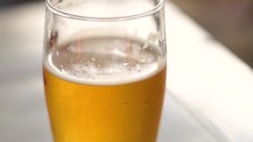 A glass of chilled beer covered in dew stock footage