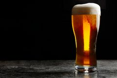 Glass of cold craft light beer on dark background.  royalty free stock photography