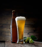 Glass of cold foamy beer brown bottle of beer and hop on a dark wooden background Stock Images