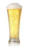 Glass of cold and fresh golden beer Royalty Free Stock Photo