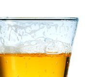 Glass of cold light beer Royalty Free Stock Photography
