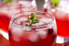 The glass of cold refreshment summer drink with cranberry juice, ice cubes and mint. The glass of cold refreshment summer drink with cranberry juice, ice cubes Stock Image
