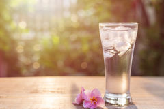Glass of cold water with ice and pink plumeria flower on table  Stock Photo