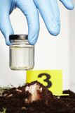 Glass for collecting of fly larva on crime scene Stock Photo