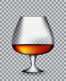 Glass Collector 50 year-old French Cognac. On Transparent Background. Vector Illustration. EPS10 Stock Photos