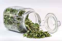 Glass container with a tea leaf spilled on table. Overturned glass container with a tea leaf spilled on table Stock Image