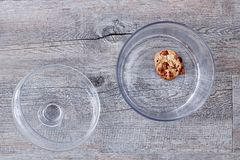 Glass Cookie Jar. A studio photo of a glass cookie jar Royalty Free Stock Photos
