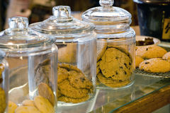 Glass Cookie Jars in a Coffee Shop. Photo of glass cookie jars in a combination coffee shop and bakery Royalty Free Stock Photo