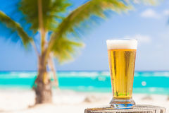 Glass of cool beer on table near beach Stock Image