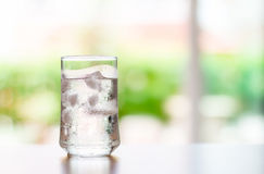 Glass of Cool fresh drink with ice cube on the  table Royalty Free Stock Photography