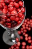 glass cranberries Royaltyfri Fotografi