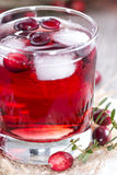 Glass with Cranberry Juice Stock Photos
