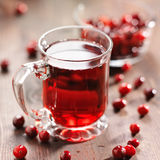 Glass of cranberry juice Stock Images