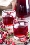 Glass with Cranberry Juice Royalty Free Stock Photos