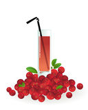 Glass of cranberry juice Royalty Free Stock Photos