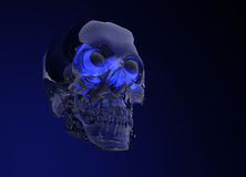 Glass Crystal Human Skull Royalty Free Stock Photos
