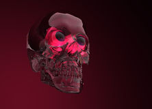 Glass Crystal Human Skull Stock Images
