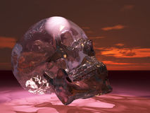 Glass or crystal skull Royalty Free Stock Photography