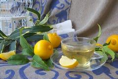 A glass cup of bergamot tea Stock Photography