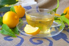 A glass cup of bergamot tea Royalty Free Stock Photo