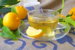 A glass cup of bergamot tea. Fresh bergamot fruits and bergamot tree twigs in the background royalty free stock photo