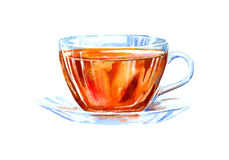 Glass cup of a black tea. Drink painting. Watercolor hand drawn illustration Stock Images