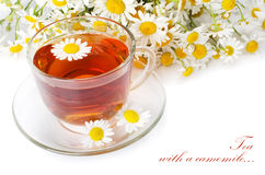 Glass cup with a camomile tea Royalty Free Stock Photography