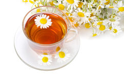 Glass cup with a camomile tea Royalty Free Stock Images