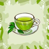 Glass cup with classic green tea with tea-tree leaves on abstract background. Hot drink hand drawn vector illustration set. Menu stock illustration