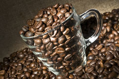 Glass cup with coffee beans Stock Images