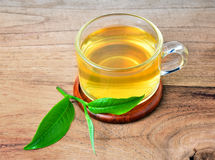 Glass cup with fresh green tea Stock Image
