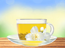 Glass cup of green tea with jasmine flowers on wooden table Royalty Free Stock Images